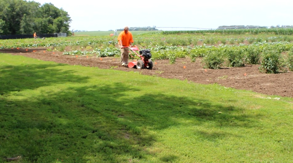 Inmates tend to the Yankton garden